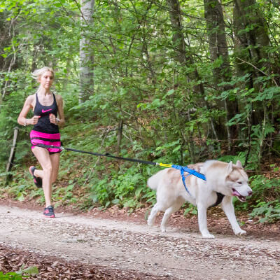 Fotografia outdoor - Nuova collezione dog gear